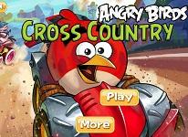 Angry Birds cu Masina