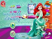 Ariel Curatenie in Garderoba