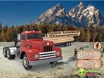 Camionul cu Busteni