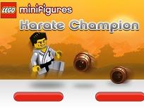 Campionul Lego la Karate