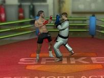 MMA Antrenamente