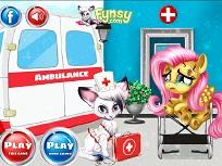 Micuta Fluttershy la Doctor
