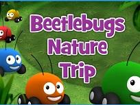 Motoanimalutele Din Jungla - Beetlebugs In Natura