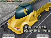 Parcari Profesioniste cu Camioane