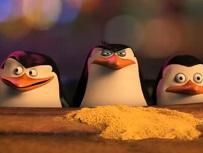 Spioneaza Penguinii din Madagascar