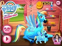 Rainbow Dash si Nou Nascutul