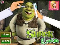 Shrek Probleme la Ochi