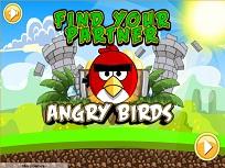 Angry Birds Cauta Partener