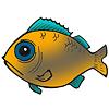 Jocuri de Pescuit
