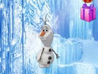 Olaf Culege Cadouri